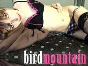 birdmountain