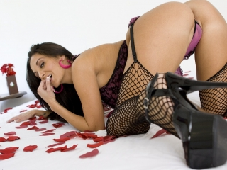 Picture of Avaaddams Web Cam