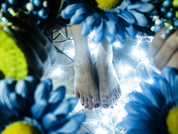 my feet are my sensory